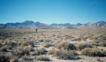 #1: View west toward Grapevine Mts & Death Valley NP.