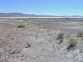 #4: View South (across the dry lake bed)