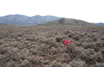 #1: view southeast towards Red Butte