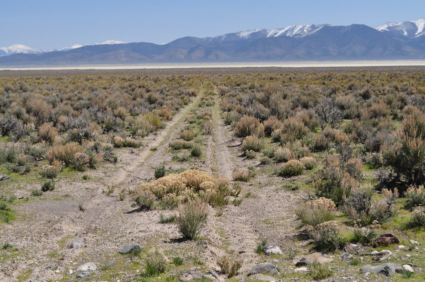 The access road to the lake bed