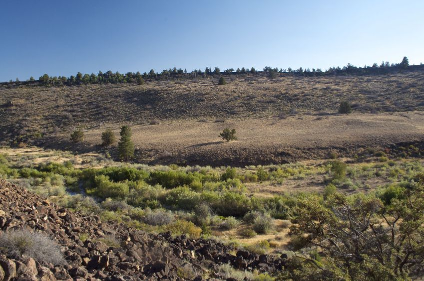 View South (across a creek, to a rocky ridge that forms the border with Nevada (left) and California (right))
