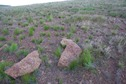 #5: The confluence point lies on a rock-strewn hillside. Fortunately, these rocks appear to be natural; not a rock cairn