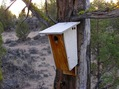 #7: A closeup of the birdhouse