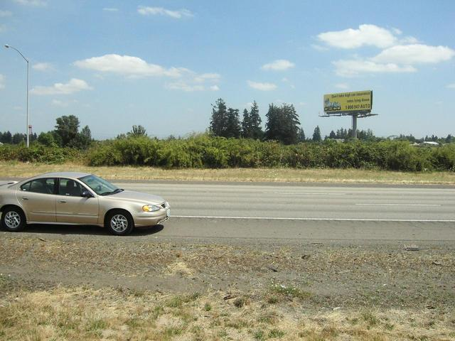 Looking east at my rental car in the shoulder of I-5.