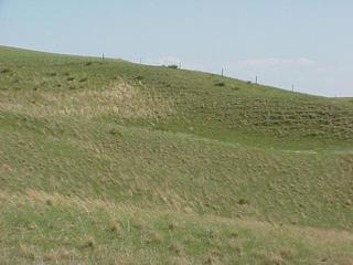 #1: South Dakota-Nebraska fence line, looking south from confluence.