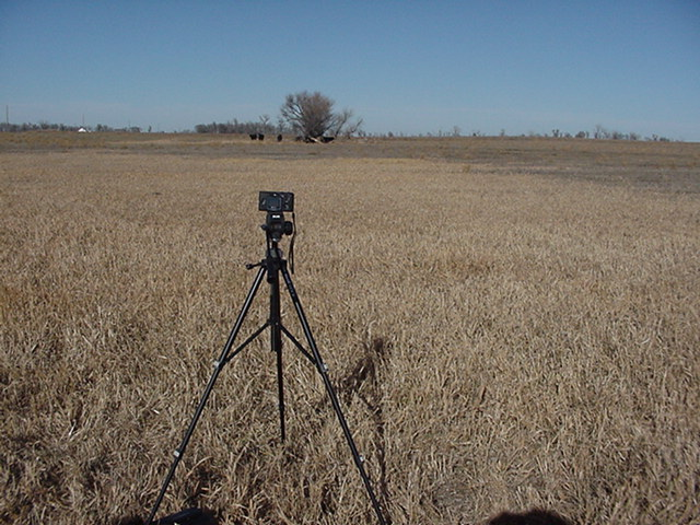 Camera tripod@ 44N-98W Looking North with cattle in the distance.