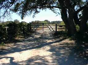 #1: Looking south toward the confluence from the H-O ranch gate