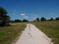 #2: Hill Country Road