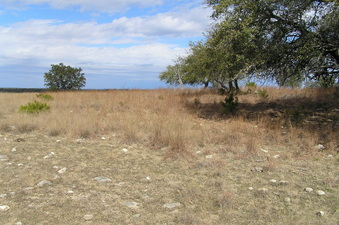 #1: Site of 31 North 98 West, looking north up the ridge, Texas Hill Country USA!