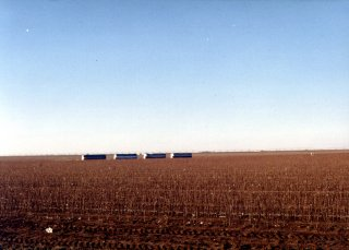 #1: The cotton field containing 34N/102W.