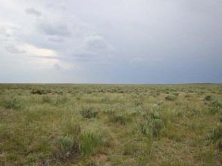 #1: Looking west:  yucca plants, sagebrush, and an approaching storm