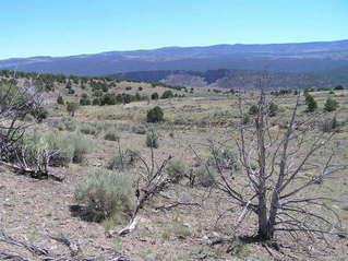 #1: View to the northeast in beautiful central Utah from the confluence.