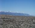 #2: looking south to another section of the Wasatch