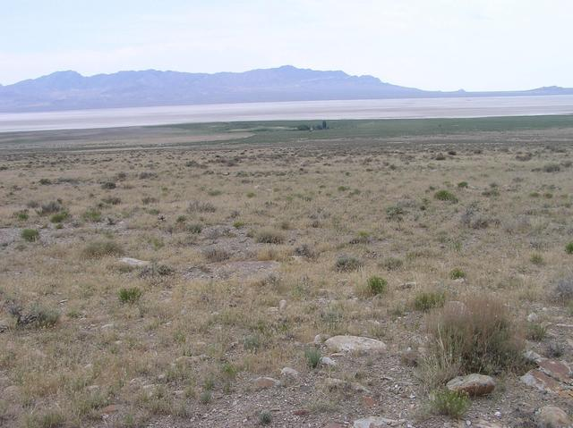 View East (a dry lake bed, and the Eugene Munsee Cabin)