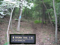 #5: A half mile hike up the Virginia Trail provides an easy approach to 38N 80W.