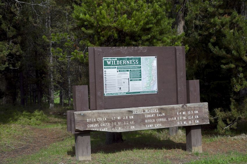The Coyote Meadows Trailhead, entering the Jedediah Smith Wilderness.  This is less than 0.4 miles from the confluence point.