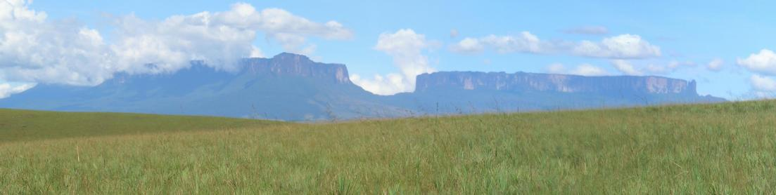 Kukenán & Roraima Tepui – view 1.77km from CP