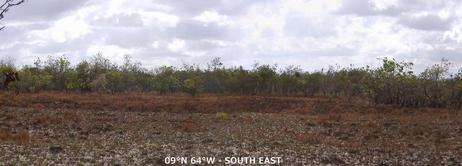 #1: CP ~150 m to the SOUTH EAST, across the burnt clearing