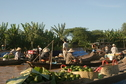 #7: Tra On floating market