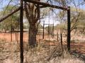 #7: Game fencing west of the Confluence