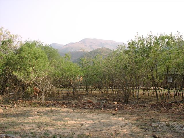 View towards confluence area from Kromdraai Camp