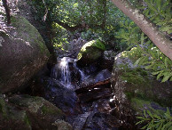 #7: The way up the Jonkershoek River
