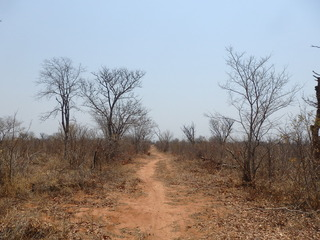 #1: Road towards the Confluence at 9.3 km distance