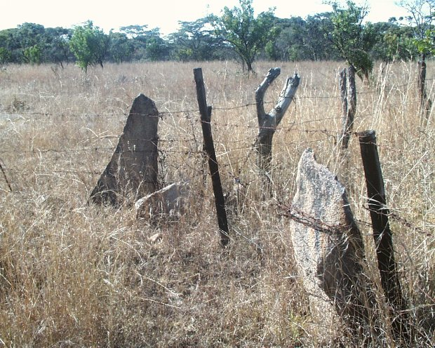 Rock slivers used as fence posts