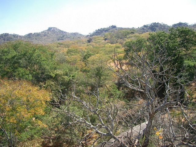 Photograph of general area taking from one of the rocky hills